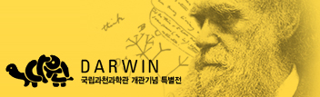 darwin2